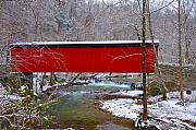 Bill Cannon - Covered Bridge Along the Wissahickon Creek